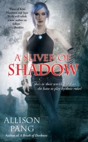 Allison Pang A Sliver of Shadow
