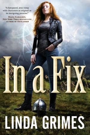 In a Fix - Linda Grimes